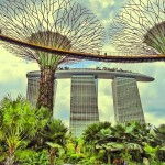 Gardens by the bay  Сингапур