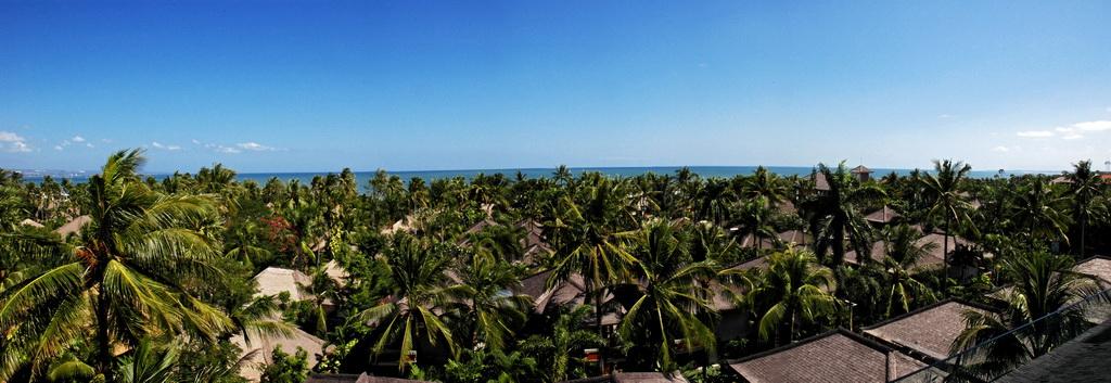 Mandira's view 04